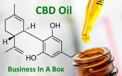 CBD Oil Biz In A Box