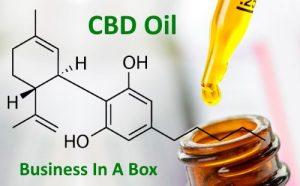 CBD Oil Biz In A Box