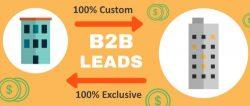 100 B2B Leads